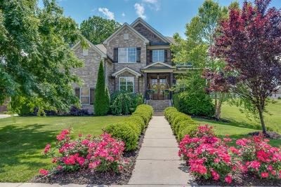 Williamson County Single Family Home For Sale: 4025 Miles Johnson Pkwy