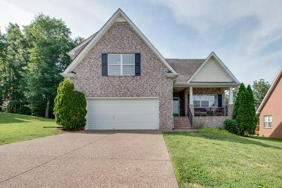 Smyrna Single Family Home For Sale: 3803 Masters Dr