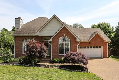 Sumner County Single Family Home For Sale: 1009 Creekglen Ct