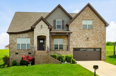 Spring Hill Single Family Home For Sale: 1034 Red Pepper Rdg