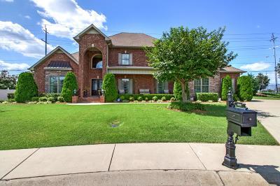 Murfreesboro Single Family Home For Sale: 2719 Dora Elizabeth Ct