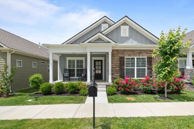 Nolensville Single Family Home For Sale: 4022 Liberton Way