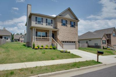 Fairview Single Family Home For Sale: 7403 Holly Leaf Way