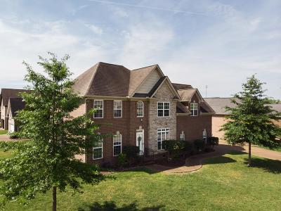 Mount Juliet Single Family Home For Sale: 1046 Stonehollow Way