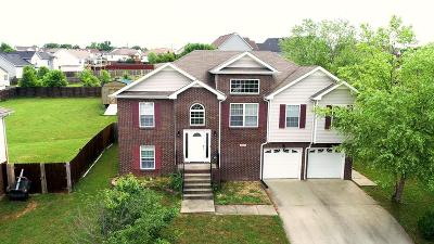 Clarksville Single Family Home For Sale: 3391 Quicksilver Ct