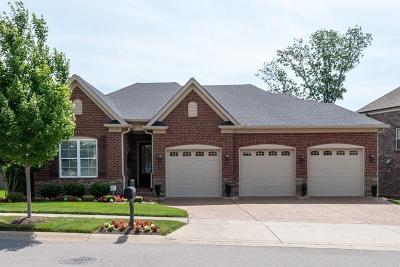Nolensville Single Family Home For Sale: 8013 Warren Dr