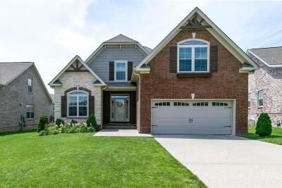 Spring Hill Single Family Home For Sale: 8005 Ragusa Cir
