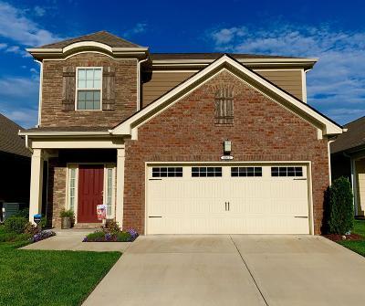 Smyrna Single Family Home For Sale: 6010 Porterhouse Dr