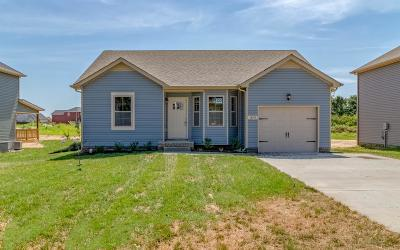 Christian County, Ky, Todd County, Ky, Montgomery County Single Family Home For Sale: 1879 Rains Rd