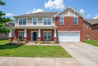 Nashville Single Family Home For Sale: 6269 Rivervalley Dr