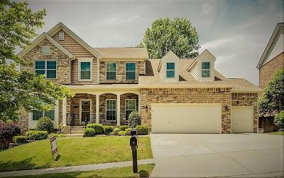 Bellevue Single Family Home For Sale: 805 Silverbrook Ct