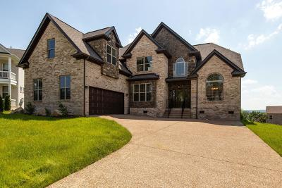 Hendersonville Single Family Home For Sale: 104 Coachlight Court