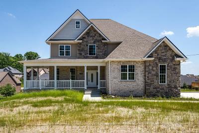 Smyrna Single Family Home For Sale: 516 McGrath Dr