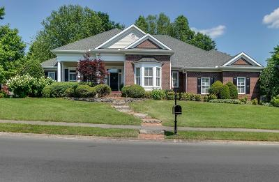 Franklin Single Family Home For Sale: 534 Ploughmans Bend Dr