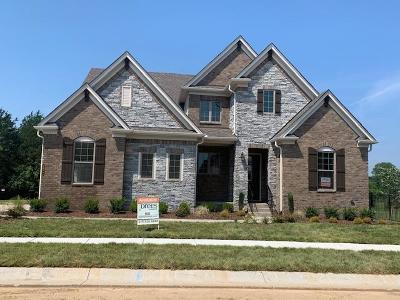 Nolensville Single Family Home For Sale: 2013 Belsford Drive #168