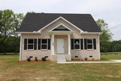 Smithville Single Family Home For Sale: 258 Green Meadow Dr