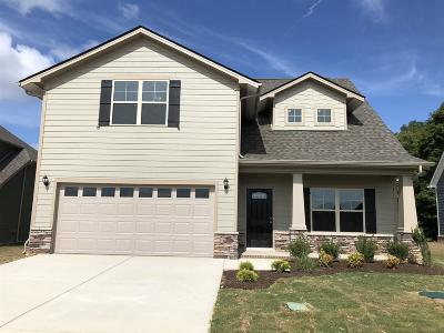 Fairview Single Family Home For Sale: 1027 Brayden Drive Lot 36