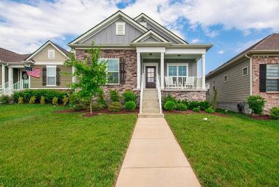 Nolensville Single Family Home For Sale: 4226 Dysant Aly
