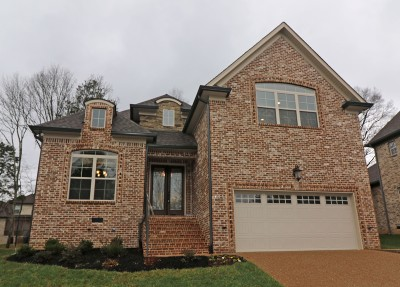 Mount Juliet Single Family Home For Sale: 405 Riverstone Place