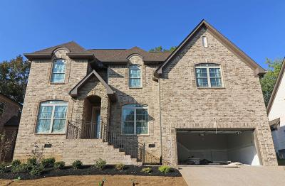 Mount Juliet Single Family Home For Sale: 407 Riverstone Place
