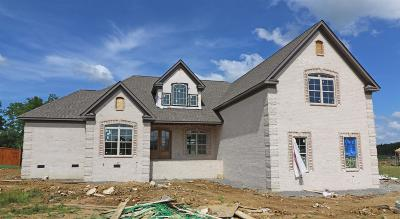 Mount Juliet Single Family Home For Sale: 841 Harrisburg Lane