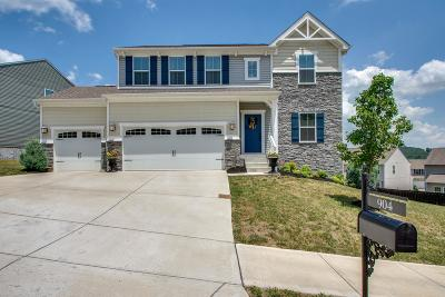 Bellevue Single Family Home For Sale: 904 Fairdale Ct