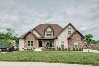 Single Family Home For Sale: 159 Dobson Knob Trl
