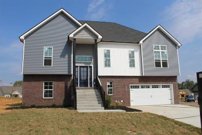 Ashland Hills Single Family Home For Sale: 53 Reserve At Sango Mills