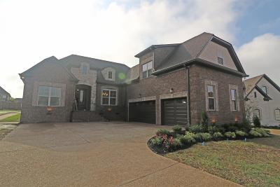 Mount Juliet Single Family Home For Sale: 2003 Beechhaven Circle