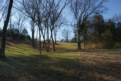 Antioch Commercial For Sale: 1721 Rural Hill