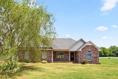 Spring Hill Single Family Home For Sale: 3465 Clegg Dr