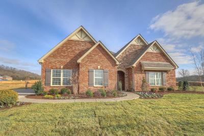 Gallatin Single Family Home For Sale: 1048 Windemere Drive