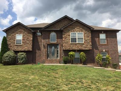 Clarksville Single Family Home For Sale: 1517 Mammy Ln