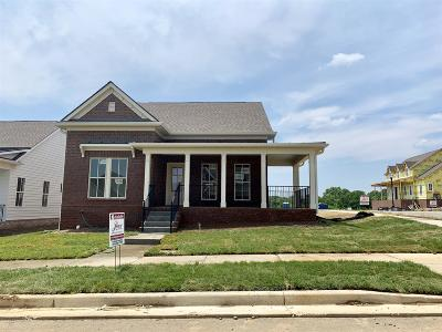Nolensville Single Family Home For Sale: 1597 Winding Creek Drive #167