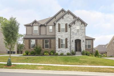 Nolensville Single Family Home For Sale: 1133 Eckerton Dr