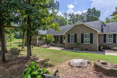 Murfreesboro Single Family Home For Sale: 9702 Lebanon Pike