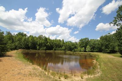 Residential Lots & Land For Sale: Azalea Ridge Rd