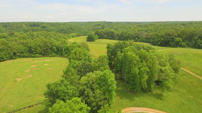 Franklin Farm For Sale: Taylor Cemetery R