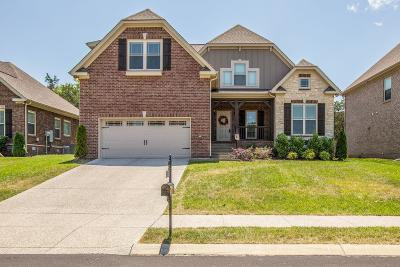 Spring Hill  Single Family Home For Sale: 3014 Yellow Brick Court