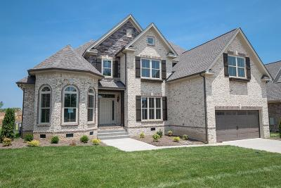 Spring Hill Single Family Home For Sale: 6042 Spade Drive Lot 259