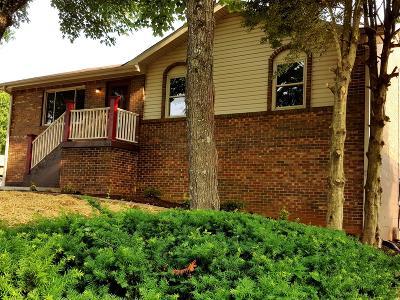 Portland Single Family Home For Sale: 207 Hunter St