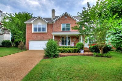 Spring Hill Single Family Home For Sale: 1762 Witt Way Dr