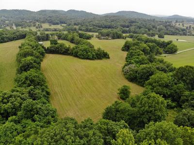Williamson County Residential Lots & Land For Sale: 4514 Peytonsville Rd