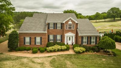 Hendersonville Single Family Home For Sale: 231 Spy Glass Way