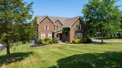 Mount Juliet Single Family Home For Sale: 926 Gailynn Marie Dr