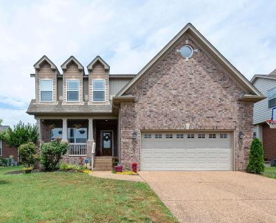 Mount Juliet Single Family Home For Sale: 1043 Stonehollow Way