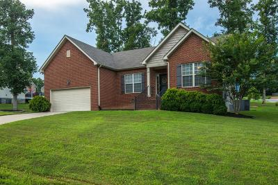 Dickson Single Family Home For Sale: 132 Iron Gate Ln