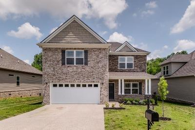 Maury County Single Family Home For Sale: 1028 Solomon Ln