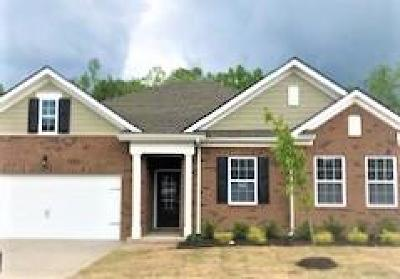 Spring Hill Single Family Home For Sale: 1302 Sylvan Park Drive 360
