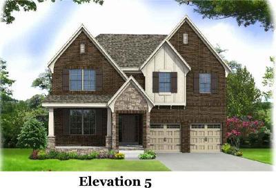Nolensville Single Family Home For Sale: 3210 Bradfield-Lot 219